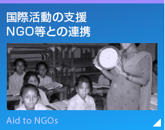 Support for International Activities/Cooperation with NGOs